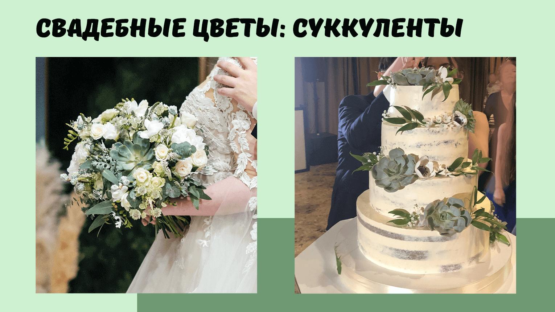 20210125_wedding_succulents_2