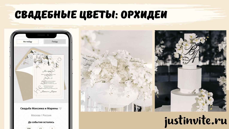 20210128_wedding_orchid